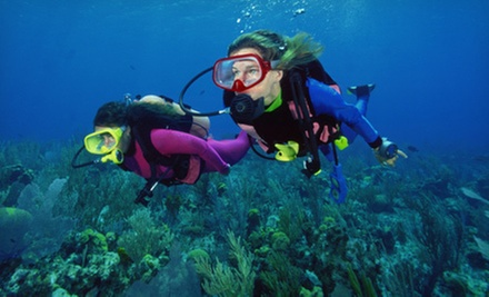 $169 for an Open-Water PADI Scuba Certification Course with Equipment Rental at In Too Deep Scuba ($349 Value)