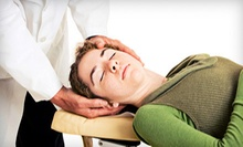 Chiropractic Package with Adjustment from Samantha Boyd, D.C., P.A. (Up to 85% Off). Two Options Available.