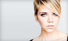 $50 for Haircut with Single-Process Color at Zoreh Beauty ($100 Value)
