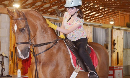 One or Three 30-Minute Horseback-Riding Lessons at Ingleside Farm (Up to 59% Off)