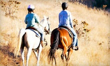 75-Minute Guided Trail Ride for Two or Four at Talking Horse Riding Stables (55% Off)