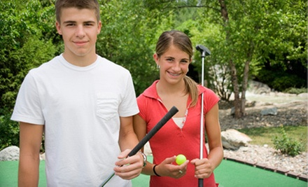$12 for Four Rounds of Mini Golf and Six Batting-Cage Tokens at Westerville Mini Golf ($29 Value)