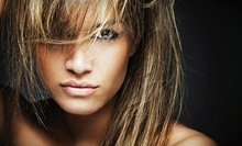 Haircut & Blow-Dry with Option for Root Touch-Up or Highlights at Andrea's Organic Hair Studio & Day Spa (Up to 63% Off)