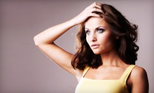 Haircut with Deep Conditioner or Full Color or Partial Highlights or a Men's Haircut at Salon Nouveau (Up to 64% Off)