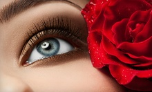 Full Set of Eyelash Extensions with Option for Touch-Up at The Lash Room (Up to 55% Off)