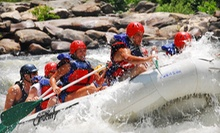 Half-Day Whitewater Rafting on Middle Ocoee River for Two or Four from High Country Adventures (Up to 52% Off)