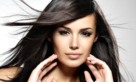 Cut, Conditioning, and Style with Optional Partial or Full Highlights at Shear Bliss Hair Studio (Up to 56% Off)