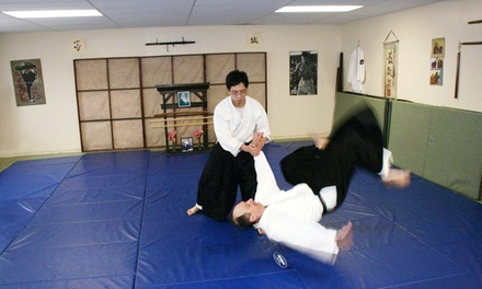 $20 for One Month of Unlimited Aikido Classes at Fudoshin Aikikai ($40 Value)