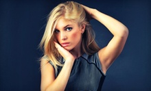 Cut with Option for Single-Process Color, Partial Highlights, or Full Highlights at The Art Salon & Spa (Up to 58% Off)