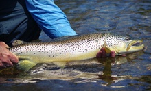 $129 for a Four-Hour Guided Winter Fly-Fishing Trip for Trophy Browns for Two from Flys and Guides ($275 Value)