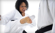 $49 for Eight Tae Kwon Do Classes, One Private Session, and Uniform at White Tiger Martial Arts ($155 Value)