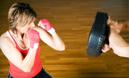 10 or 20 Kickboxing Classes with Gloves and Wraps at Rochester Fitness Martial Arts (Up to 80% Off)