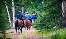 Trail Ride for Two or Four with Optional Dinner at Breckenridge Stables (Up to 54% Off). Four Options Available.