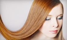 One or Three Blow-Dry Styles or Keratin Treatments at The Style Inn of Westchester (Up to 73% Off)