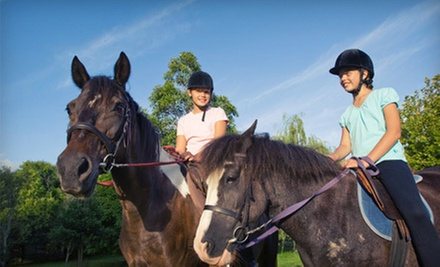 $25 for a Horseback-Riding Lesson and Trail Ride for Two to Four at Harvest Meadow Farm ($50 Value)