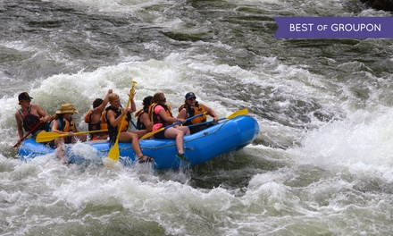 Whitewater-Rafting Trip with Food and Beverages for Up to Six from Wiley E. Waters (Up to 47% Value)