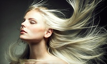 Haircut, Blow-Dry, and Style with Partial Shine Highlights or Full Foil Highlights at Dolce Salon (Up to 62% Off)