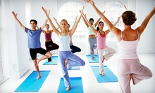 5 or 10 Yoga, Barre, Pilates, or Zumba Classes at The Mind Body Studio (Up to 55% Off)