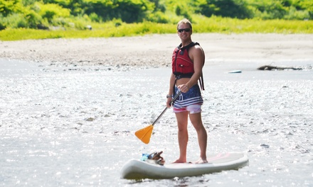 Two-Hour Stand-Up Paddle Board Rental for Two or Four from Crab Apple Whitewater (Up to 46% Off)