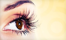 Full Set of Eyelash Extensions with Option for Two-Week Touchup at The Beauty Lounge (Up to 61% Off)