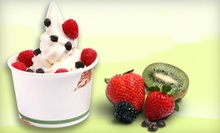 $10 for $20 Worth of Frozen Yogurt, Snow Cones, and Coffee at Frogberry