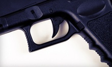 Full-Day Concealed-Pistol Class for One or Two at Protection Tactics, LLC (Up to 54% Off)