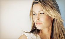 Haircut, Deep Conditioning Treatment, and Style with Optional Partial Highlights at Antoine's Salon (Up to 64% Off)