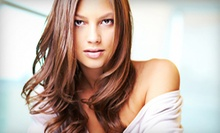 Haircut with Single-Process Color or Half-Head or Full-Head Highlights at Glamour Addict (Up to 70% Off)
