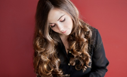 Haircut Package with Speciality Treatment, Color, or Highlights at Elegance and Edge Hair Studio (Up to 55% Off)