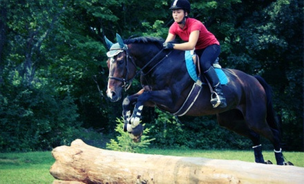 One or Three 60-Minute Horseback-Riding Lessons for Two at Another Farm (Up to 54% Off)