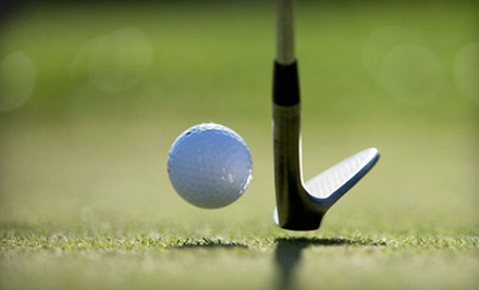 One-Hour, Private Golf Lesson for One or Two at The Daniel Ray Golf Academy (Up to 59% Off)
