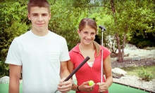 Mini Golf with Soda for Two or Four, or Mini Golf Party Package at Rainforest Golf (Up to 54% Off)