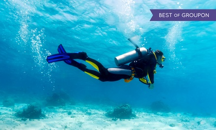 $145 for a Scuba-Certification Course from Learn Scuba Chicago ($295 Value)