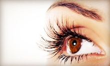 Eyelash Extensions with Optional Fill from Faedi Aesthetics at Slice Salon (Up to 62% Off)