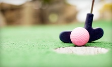 18 Holes of Mini Golf for 2, 5, 10, or 20 at Art Knapp Plantland (Up to 87% Off)