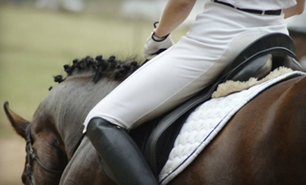 $45 for Two 30-Minute Private Horseback-Riding Lessons at Elite Equine Group ($90 Value)