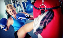 One Month of Mixed-Martial-Arts Classes at Laselva Mixed Martial Arts ($85 Value)