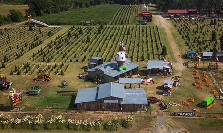 Full-Day Fall Festival for Two, Four, or Six at YesterLand Farm (Up to 54% Off)