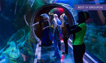 $29 for Sharks After Dark Event for Two Adults on April 25 at Sea Life Arizona Aquarium ($43 Value)
