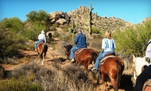Trail Ride on Horseback for One or Two from Cave Creek Outfitters (Up to 52% Off). Three Options Available.