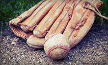 $99 for One Week of Kids' Baseball Camp at Illinois Baseball Academy ($199 Value). Five Weeks Available.