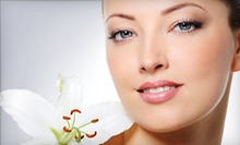 One or Three Microdermabrasion Treatments at Maral Day Spa (Up to 67% Off)