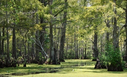 $22 for a Swamp Boat Tour for Two from Cajun Pride Tours (Up to $48 Value)