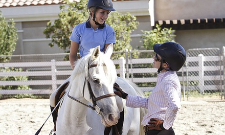 Two or Five Horseback-Riding Lessons at Stepping Stone Farms  (Up to 51% Off)