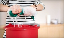 Two or Three Man-Hours of Housecleaning from Nidia's Cleaning Service (Up to 60% Off)