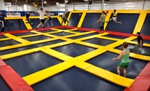 Trampolining or Private Group Trampolining at Sky High Sports (Up to Half Off). Three Options Available.