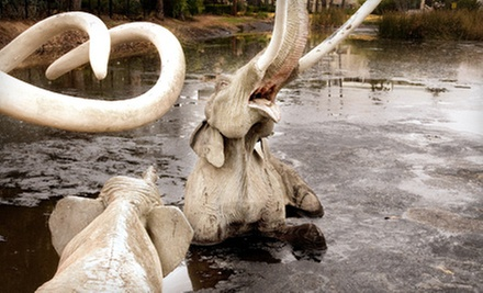 Membership to Page Museum at the La Brea Tar Pits (Up to 57% Off). Four Options Available.