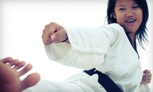 10 Drop-In Classes or One Month of Unlimited Classes with Uniform at PRO Martial Arts of Greenville (Up to 74% Off)