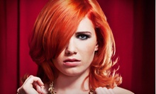 Cut and Deep Conditioning with Option for All-Over Color or Partial or Full Highlights at Sasha Salon (Up to 70% Off)