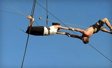 Trapeze or Circus-Sampler Class for One or Two at Aerial Trapeze Academy (Up to 55% Off)